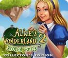 Alice's Wonderland 2: Stolen Souls Collector's Edition juego