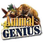 Animal Genius juego