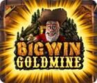 Big Win Goldmine juego