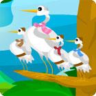 Birds Of A Feather juego