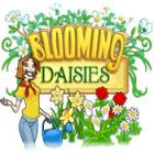 Blooming Daisies juego