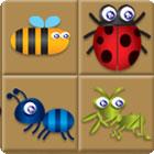 Bug Box juego