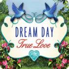 Dream Day True Love juego