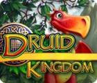 Druid Kingdom juego