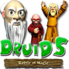 Druid's Battle of Magic juego