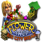 Flower Shop: Big City Break juego