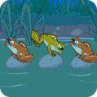 Frog Tag juego