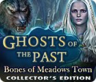 Ghosts of the Past: Bones of Meadows Town Collector's Edition juego