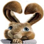 Hop: Conejito de Pascua juego