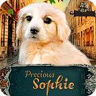 Precious Sophie juego
