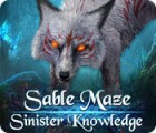 Sable Maze: Sinister Knowledge Collector's Edition juego
